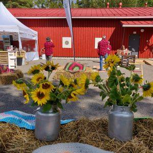 Katajistonranta Mielensäpahoittaja festivaalit tapahtumalato piha tikanheitto auringonkukat koristeena heinäpaaleilla